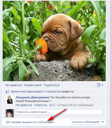 2013-06-13_facebook
